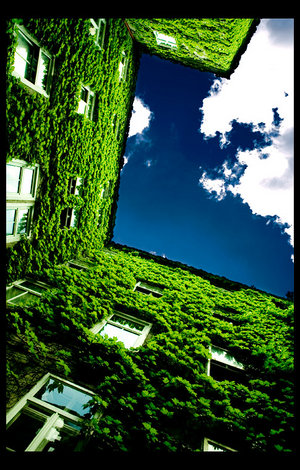 green_life____by_gnato.jpg