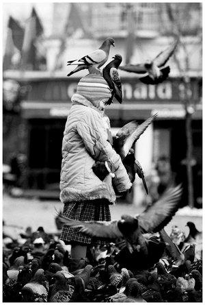 pigeons_love_children_by_edyflute.jpg
