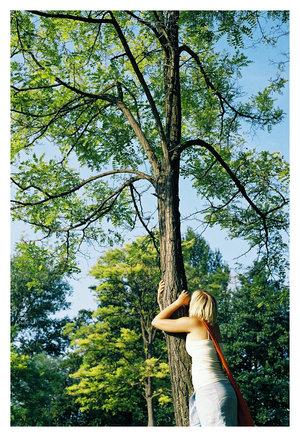hug_a_tree_by_kerian.jpg