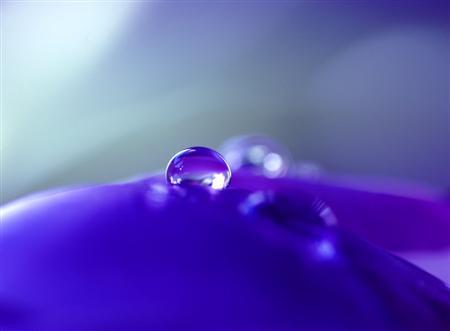 present_blue_by_photosnap-custom-2.jpg