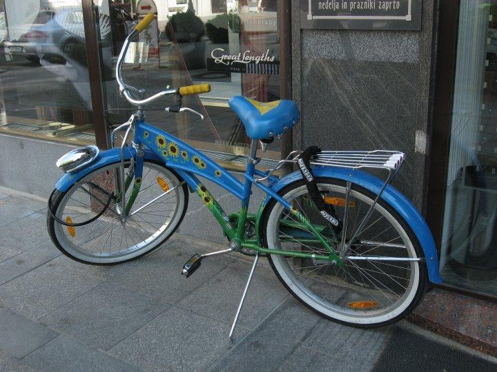 sunflower-bike