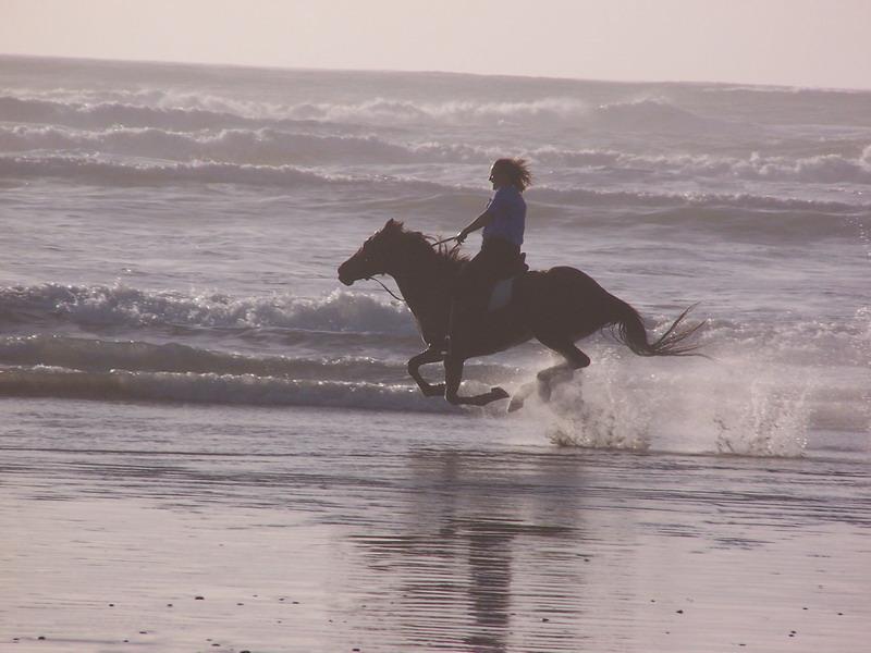 mariah_gallop_by_oceaneyez