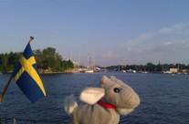 Exploradoras en Estocolmo