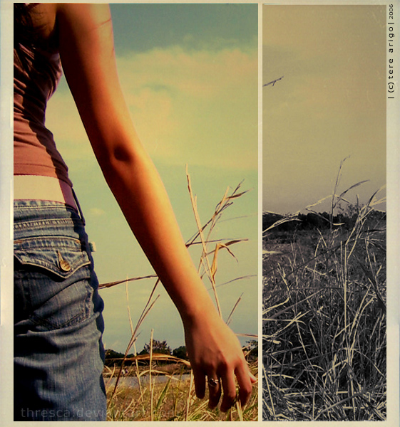 a_place_of_summer____by_thresca